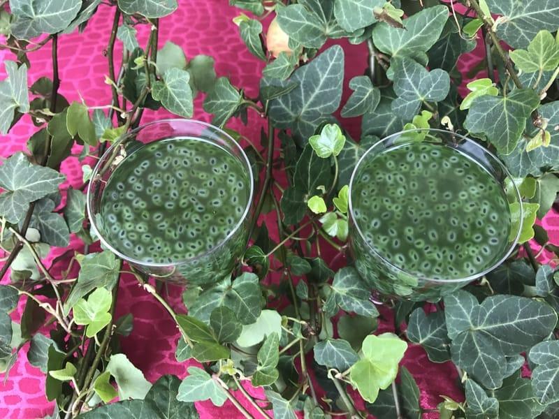 Les trouvailles de Lou : Basil Seed Drink boisson aux graines de basilic